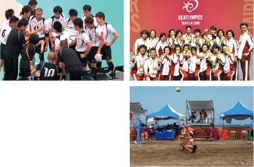 一般社団法人日本デフバレーボール協会